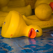 Fallen rubber duck